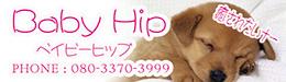 Baby Hip|ベイビーヒップ(C)babyhip_c|福岡アロマエステ案内所